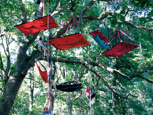 tree climbing france endroits et venements insolites en france. Black Bedroom Furniture Sets. Home Design Ideas